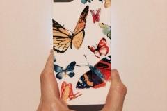 Butterflies-Decourchelle_A-1